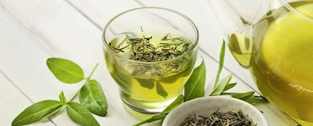 Groene thee bevat het antioxidant EGCG. DIt beschermt lichaamscellen.