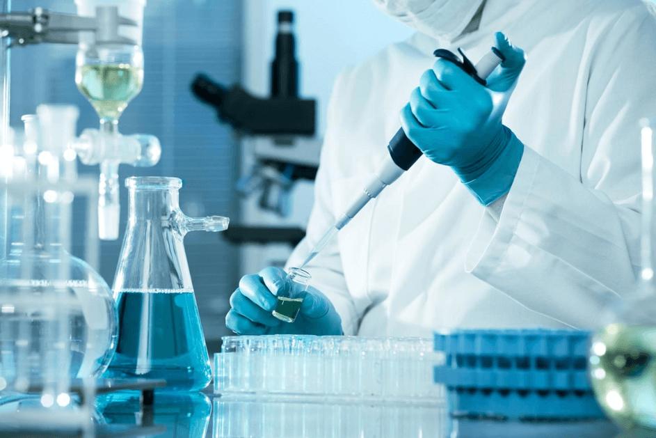 Laboratoriumexperimenten hebben mogelijke kankerbestrijdende eigenschappen van avocado's ontdekt