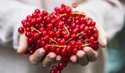 Ketogeen Dieet, keto, rood fruit