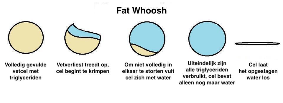 Hoe werkt de Fat Whoosh?